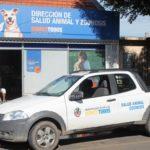 Zoonosis mantiene guardias pasivas de veterinarios para perros de la canera y casos extremos