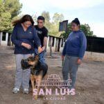 Zoonosis: realizaron la preselección de asistentes para el taller de adiestramiento canino